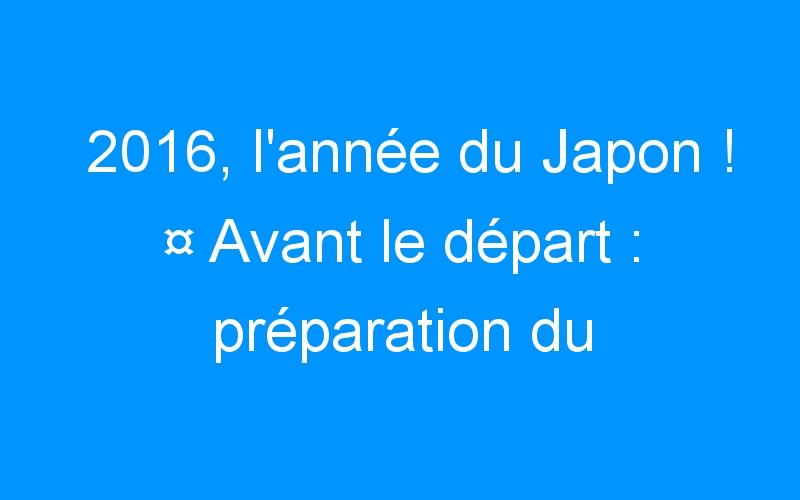 2016, l'année du Japon ! ¤ Avant le départ : préparation du voyage