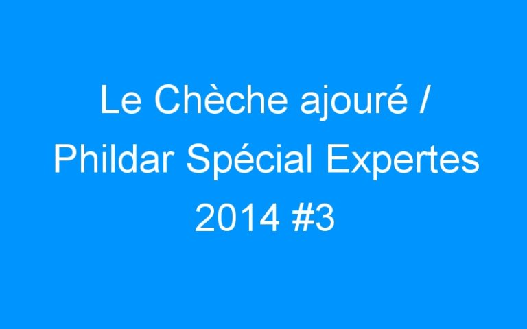 Le Chèche ajouré / Phildar Spécial Expertes 2014 #3