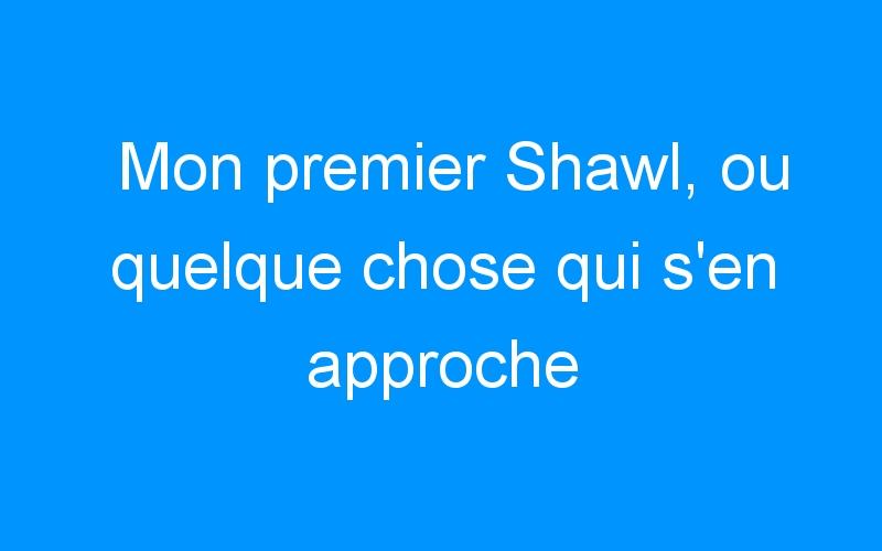 Mon premier Shawl, ou quelque chose qui s'en approche