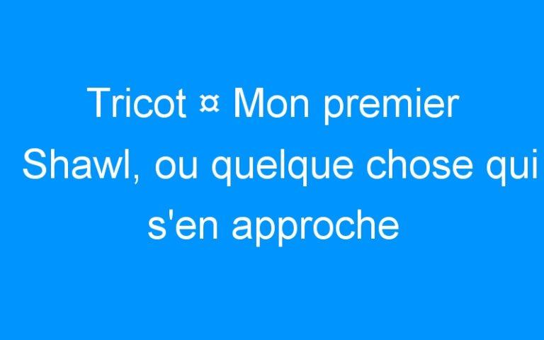 Tricot ¤ Mon premier Shawl, ou quelque chose qui s'en approche