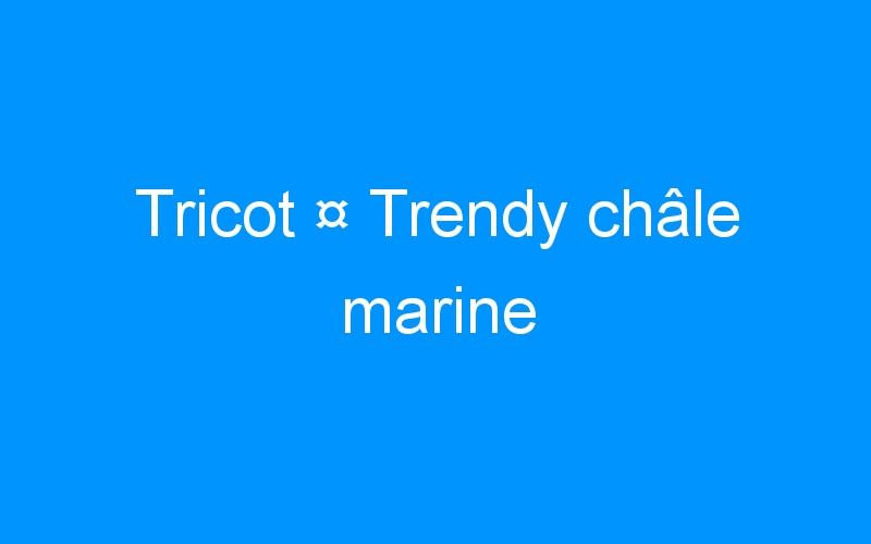 Tricot ¤ Trendy châle marine